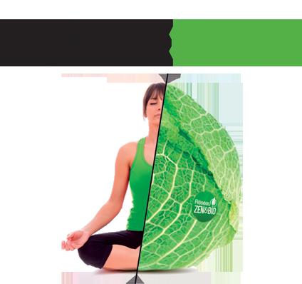 logo salons Respire
